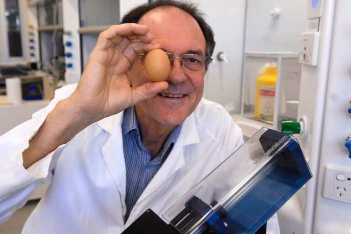 This Scientist Un-boiled an Egg !