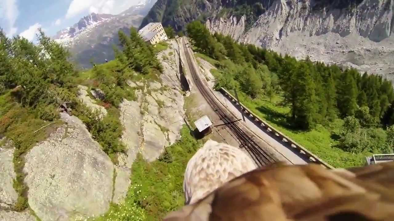 Experiencing the real Eagle's Eye view point