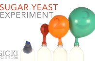 Sugar Yeast Experiment – Sick Science!