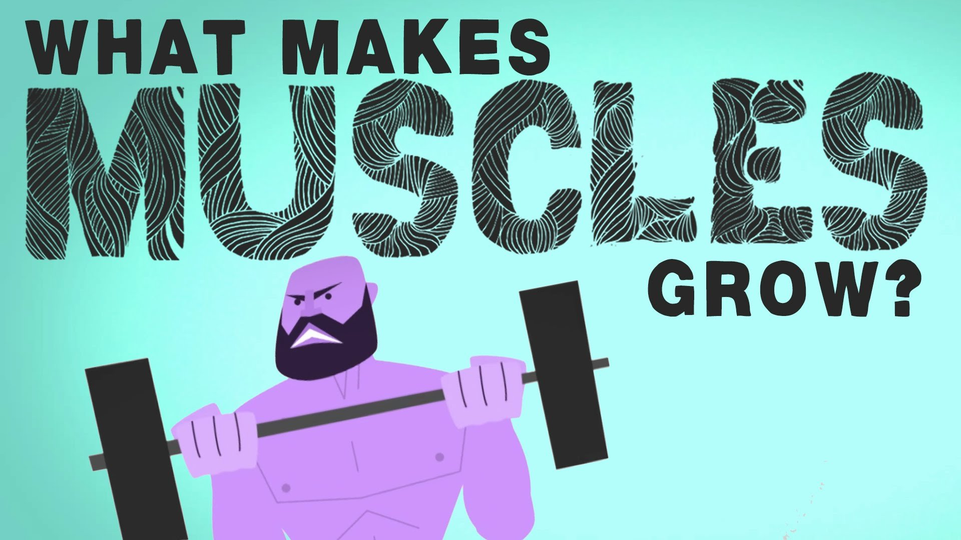 How our muscles grow ?
