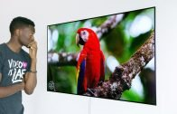 The 4K OLED Wallpaper TV