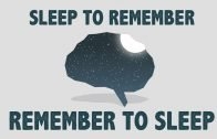Remember to Sleep, Sleep to Remember!
