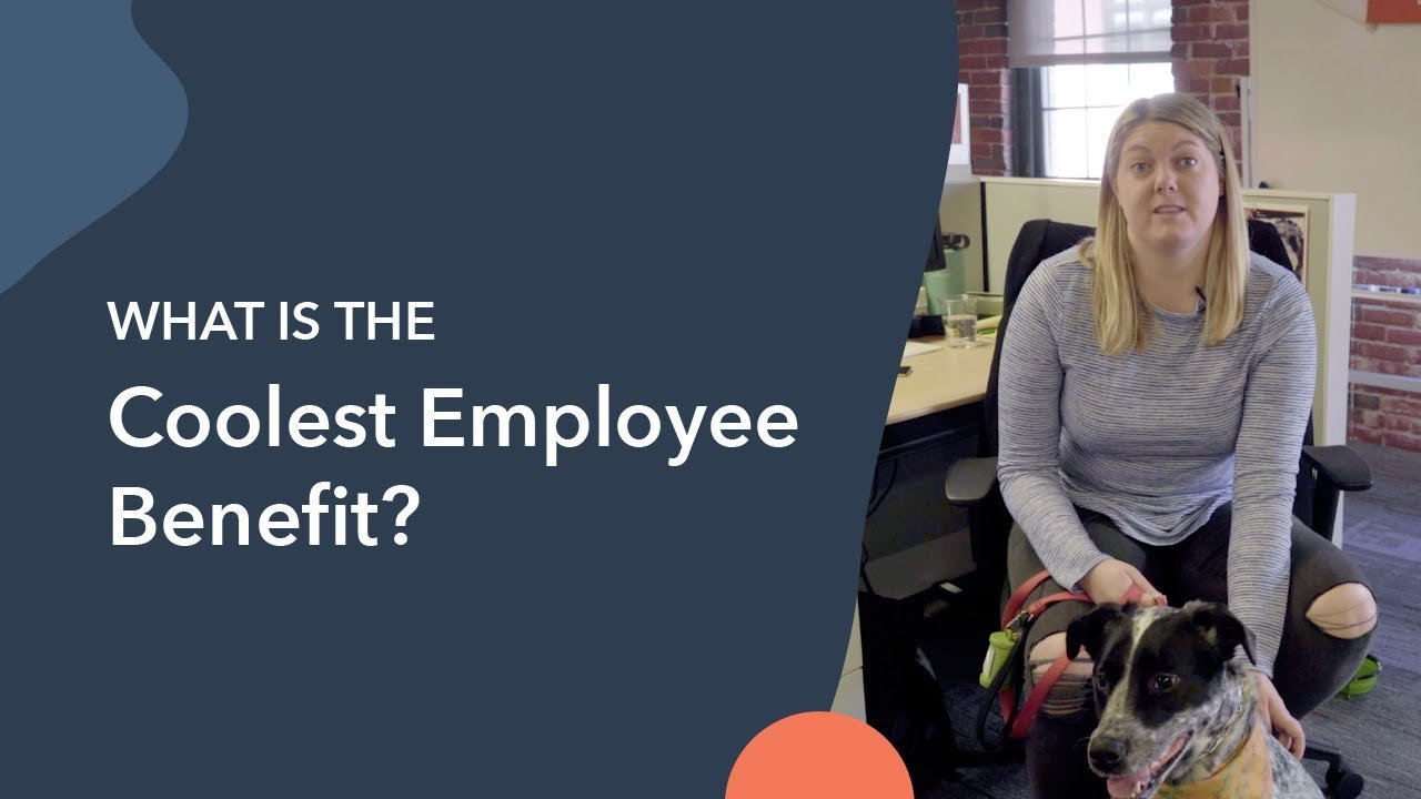 What's the Coolest Employee Benefit You've Ever Heard Of?