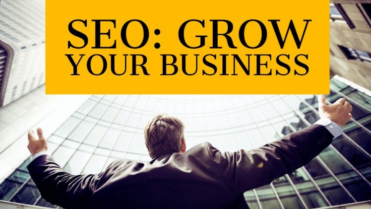 Grow your Business through SEO and Search Marketing